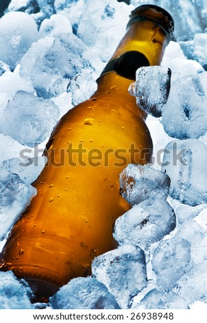 A beer bottle sitting in a container of ice. Cold and ready to drink.