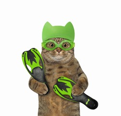 A beige cat in a green swimming hat and goggles holds flippers. White background. Isolated.