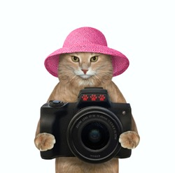 A beige cat photographer in a pink straw hat holds a black photo camera. White background. Isolated.
