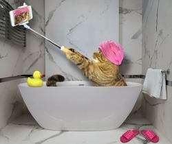 A beige cat with a pink towel around its head is taking a bath and making a selfie at the hotel.