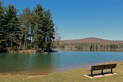 A bench overlooking an island within a lake at Allegany State Park.