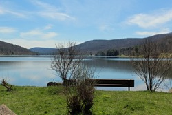 A bench seated in front of Quaker Lake at Allegany State Park.