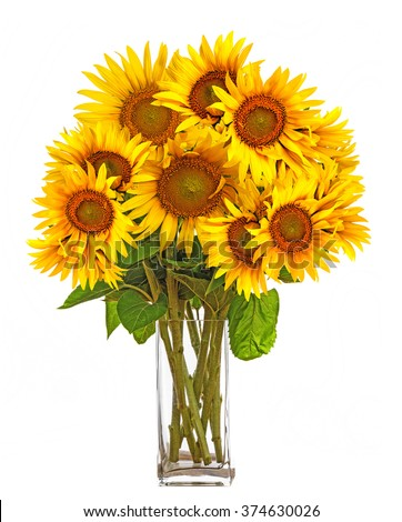 a big bunch of sunflowers in a vase #374630026