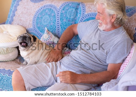 A big dog yawn. Cheerful senior man white hair and beard playing with his clear pug dog. Together in friendship and love. Sitting on a sofa. One people and one animal