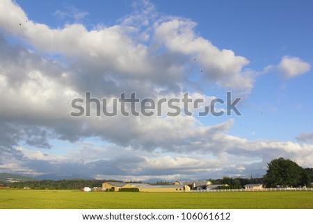 A big evening landscape in rural Canada/Evening Rural Landscape in Canada/A Canadian rural landscape