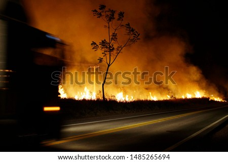 A big fire burn vegetation on the side of the BR 010 road, close to the city of Belem, Para state, north of Brazil.