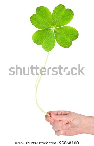 a big shamrock hold in hand