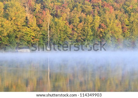 A birch trunk and fall foliage reflected in Eighth Lake in the Fulton Chain Lakes in the Adirondacks Mountains of New York