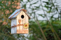 A bird house decorated in a garden makes our backyard beautiful. And there are birds creating a fresh atmosphere in the backyard.