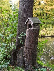 A bird house standing on the stub nearby a tree