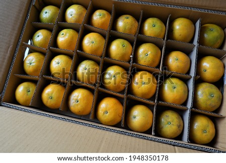 A bird's eye view of a tangerine in a rectangular carton box with separate compartments.  Foto stock ©