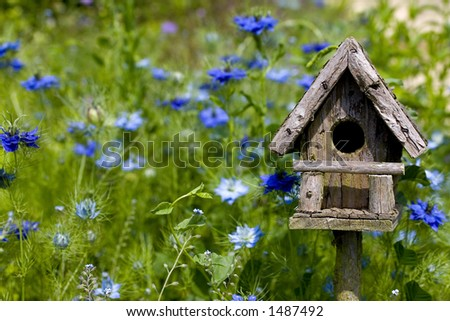 A birdhouse nestles among spring flowers