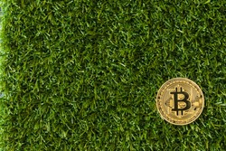 A Bitcoin Cryptocurrency Digital Bit Coin BTC Currency Technology Business Internet Concept. Bitcoin in the grass