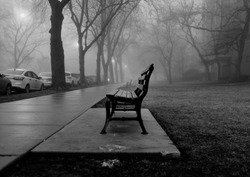 A black and white photo of a foggy city park bench during early winter. The trees are bare and the leaves that does the ground are dead.