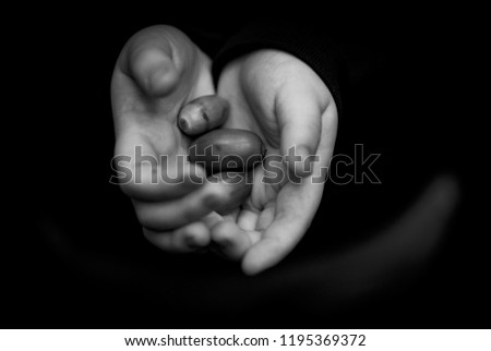 A black and white photo of a small boys hands holding 3 small acorns.