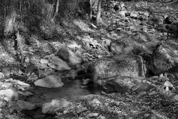A black and white photo of a stream flowing with clear water