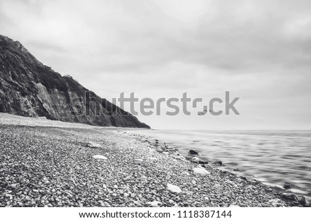 A black and white photographic image of a pebbly beach, coast, coastal, seascape scene, view, including cliffs, clouds, birds in flight and a calm sea, ocean with waves and ripples