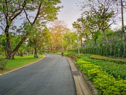 A black asfalt concrete jogging track in a public park, a man walking on curve shape walkway under evergreen leaves trees ,sunshine morning and blue sky, in a good care maintenance garden