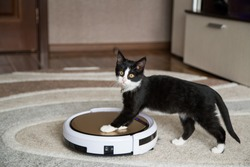 A black cat plays with a robotic vacuum cleaner that cleans the floor.pet playing with robot vacuum cleaner