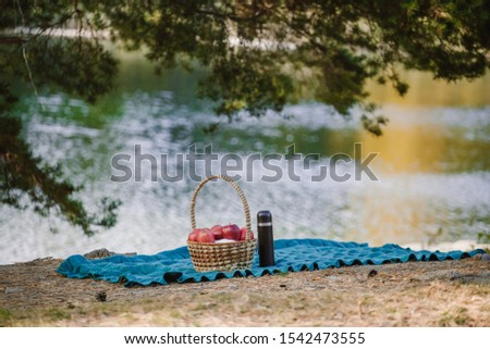 A blanket and a basket with apples and a thermos with tea lies on the shore of a pond in a park under pine branches. Picnic still life