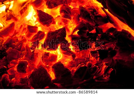 A blazing fire in a cement fire pit at the beach during night time.
