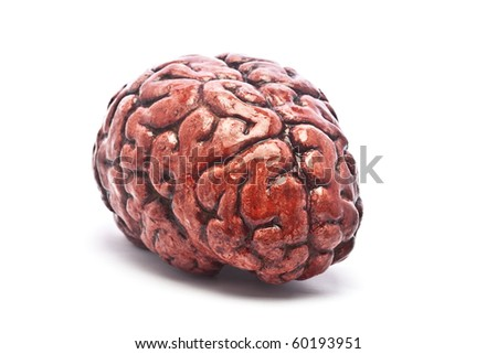 A bloody brain, on a white background. Check out the other images in this series.