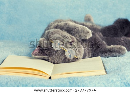 A blue british cat is wearing glasses lying and sleeping on back on the book