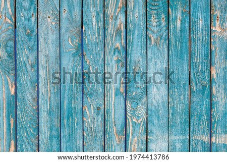 A blue-green wooden fence with a pronounced knotty texture and a rough surface, with cracked blue-green paint. A high resolution. Stock photo ©