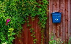 A blue mailbox on a red fence among flowers.