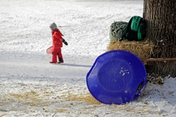 A blue plate sled leaning at a bale of straw ready for the next schuss down the Monopteros hill in the wintry English garden, Munich, Germany with a child in its red snowsuit in the blurred background