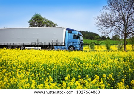A blue truck on a road running between yellow corn #1027664860