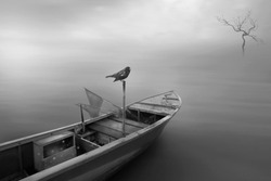 A boat and lonely bird in the grey water and grey sky. Concept of lonely, sad, alone and hopeless.