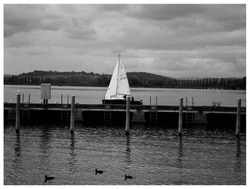 A boat leaving the bay at the Bodensee