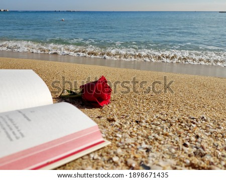 A book and a rose laying on the beach. Sant Jordi - Valentine's Day Photo stock ©