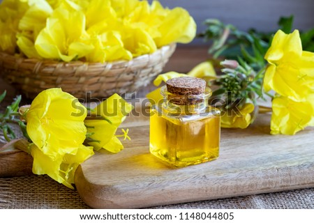 A bottle of evening primrose oil and fresh blooming plant  #1148044805