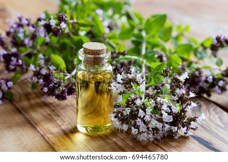 A bottle of oregano essential oil with blooming oregano twigs on a wooden background #694465780