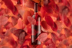 a bottle of red or rose wine on a background of autumn leaves, horizontal close-up photo.