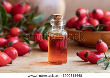 A bottle of rose hip seed oil with ripe berries Stock photo ©