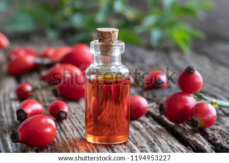 A bottle of rosehip seed oil with fresh berries on a rustic background Stock photo ©