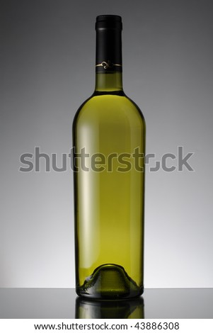 A bottle of white wine against a gradient background on reflective surface