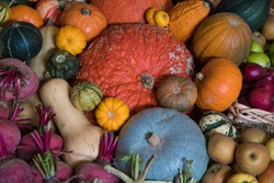 A bountiful display of pumpkins, beetroot, apples and gourds at harvest time