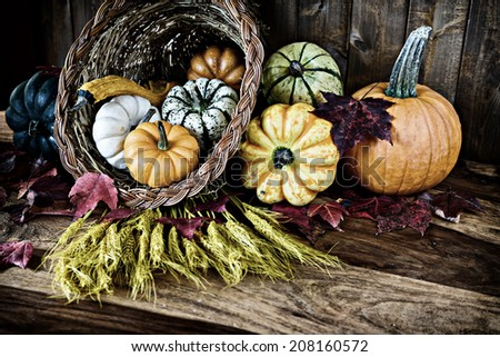 A bountiful thanksgiving cornucopia with squash, gourds, pumpkins, wheat and leaves on an old antique table.  Filtered for an aged retro look.