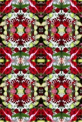 a bouquet arrangement abstract of red roses with stargazer lilies and babys breath 7747