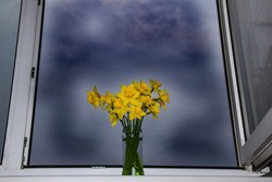 A bouquet of daffodils by an open window in a transparent vase. Bright yellow daffodils against a dark cloudy sky. The concept of a positive outlook on life, there is always a plus
