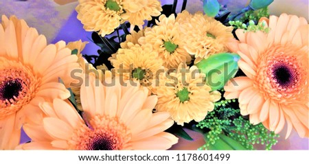 A bouquet of gerberas. Floral background. Floral pattern. #1178601499