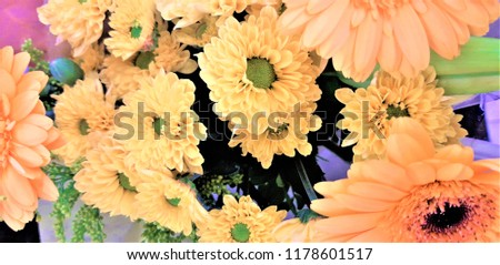 A bouquet of gerberas. Floral background. Floral pattern. #1178601517