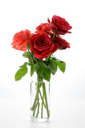 a bouquet of red and orange roses on a glass jar fill with water isolated on white background