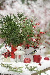 A bouquet of red rosehip berries in a White jug, green branches in a red jug and a bird on the background of a snow-covered garden