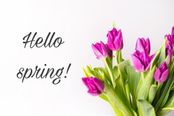 A bouquet of tulips in a vase. Banner hello spring . Lilac tulips. New season. Spring. Hi, Mart. Flowers in a vase.
