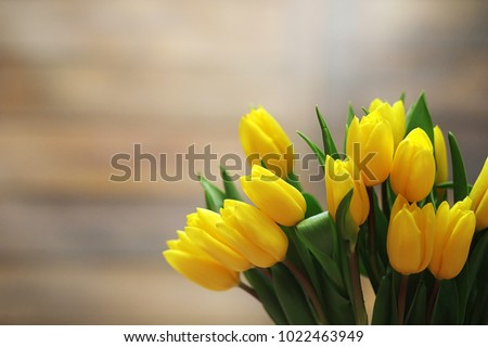 A bouquet of yellow tulips in a vase on the floor. A gift to a woman\'s day from yellow tulip flowers. Beautiful yellow flowers in vase by wall.